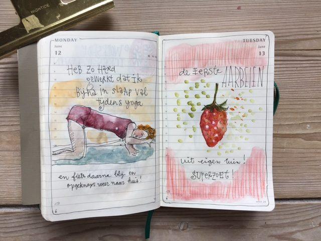 Daily Diary juni 2017