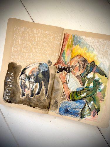 Tekening door Kit Le Large van Herman die een Bosvarken fotografeert
